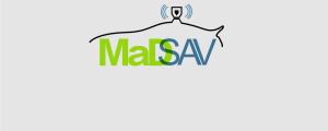 MadSAV
